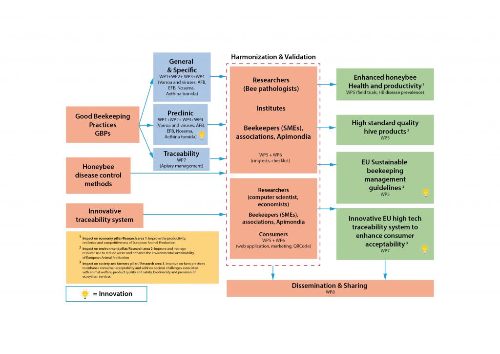 BPractices Project Scheme